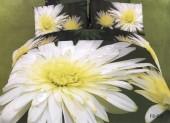 Постельное белье Famille Королевский сатин арт. RS-81 евро 50х70 см