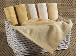 Набор полотенец Иссимо RING бамбук 30х50 (6 шт)