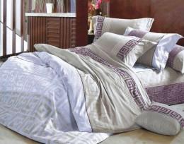 Постельное белье Valtery сатин печатный 2-спальное 70х70 см арт. CL-105