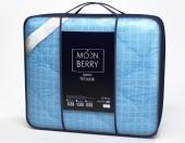 Одело Svit Moonberry Лебяжий пух, чехол поплин, зимнее евро 200х215 см